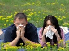 Алергично масло от черен кимион