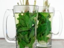 Ledų arbata su mėtų