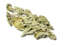 Salvia seca
