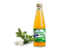 Bebidas à base de kombucha