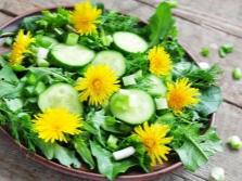 Salad Daun Dandelion