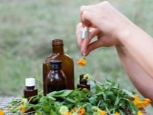 Използването на масло от невен в медицината