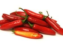 Chili paprika serrano