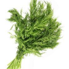 Um monte de erva-doce verde