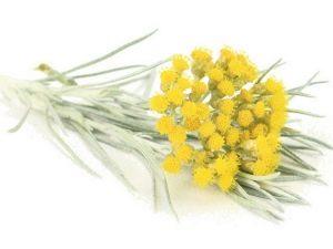 Nerūdijančio smėlio gėlės