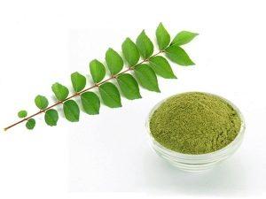 Murrayya - família de plantas rutovyh