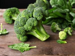 Brócolis: tipos, plantio e cuidado