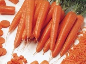 الجزر من السعرات الحرارية كم عدد السعرات الحرارية في الخضروات النيئة والمسلوقة Bju لكل 100 غرام والقيمة الغذائية للخضروات الجذرية
