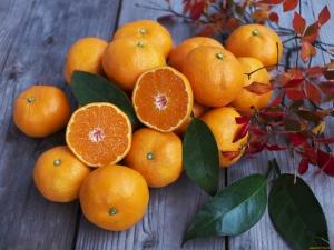 Apelsinų - vaisių arba uogų, su kuriomis geriau derinti ir kaip pasirinkti?