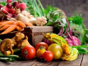 Przechowywanie Warzyw W Jakiej Temperaturze Przechowywać W