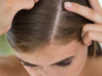 Oregano für Haare