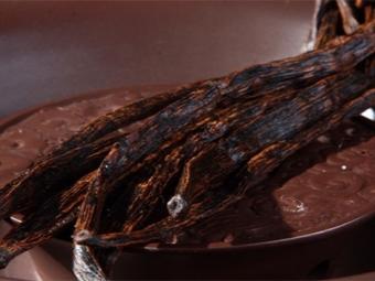 الفانيلا والشوكولاته