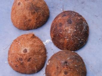 Сушене на кокосови черупки