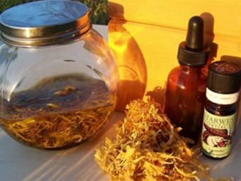 Tintura de calêndula com óleo essencial de calêndula