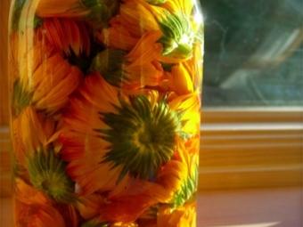 Tintura de calêndula de flores inteiras