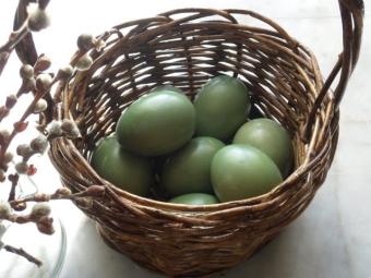 Ovos coloridos de espinafre