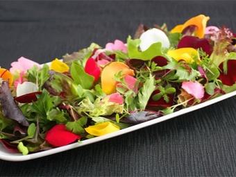 Rožinė žiedlapių salotos