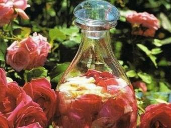 Rožių žiedlapių infuzija