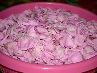 Bahan mentah untuk jem dari mawar