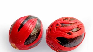 Nutmeg (боздуган)