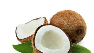 Кокос (кокос)