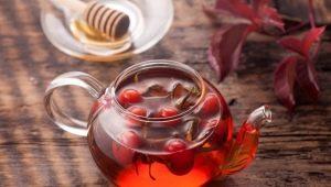 Wie kann man Wildrose brauen und trinken?