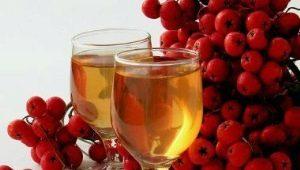 Тайните на готвенето на виното от офика