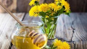 Πικραλίδα μέλι: ιδιότητες και τεχνολογία μαγειρέματος