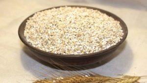 Miežu graudi: no kādas labības un kā gatavot?