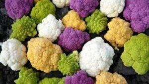 Egzotinės daržovės: veislės ir skonis