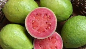 Quais frutas são verdes?