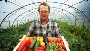 Daržovių auginimo ypatybės