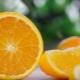 Ką ruošti iš apelsinų?