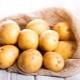 Ziemniaki: cechy, odmiany i zastosowania