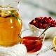 Tratamento de mel: os benefícios e prejudicar receitas eficazes