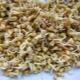 Gandum rumpai sprouted: faedah, kecederaan dan kehalusan penggunaan
