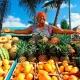 Buah-buahan Dominika, nama dan petua mereka memilih