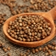 Ground coriander: χαρακτηριστικά εφαρμογής και ιδιότητες