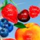 Calendário sazonal de frutas por mês