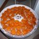 Como secar a fruta no secador?