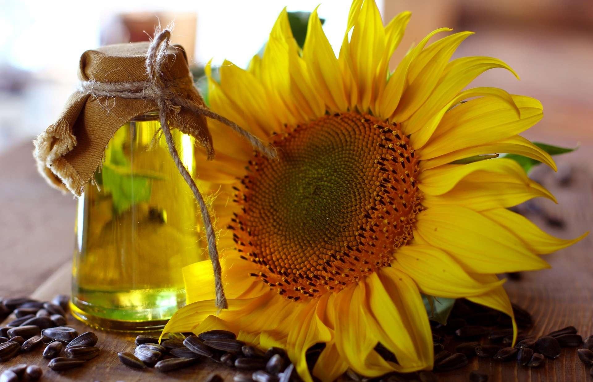 Sonnenblumenöl Gegen Verstopfung