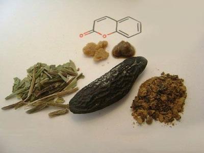 Spice - Tonka pupelės