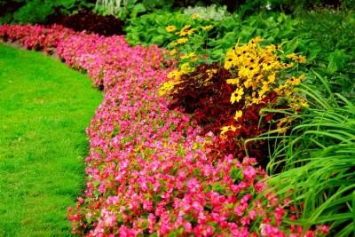 Szép virágágyás gravitációval