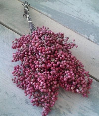 Η ροζ πιπεριά χρησιμοποιείται επίσης για ιατρικούς σκοπούς.