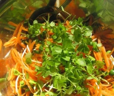 Σαλάτα με καρότα και αστερίες