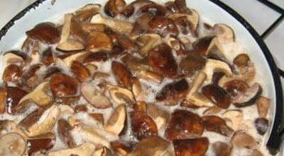 Gotuj białe grzyby