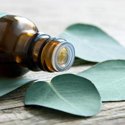 Nilai pemakanan dan komposisi kimia minyak kayu putih