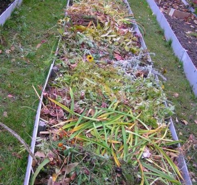 Volvushkah crescente - camas de colheita