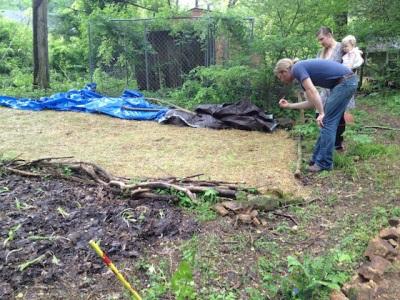 Καλλιέργεια μανιταριών στον κήπο και στον κήπο