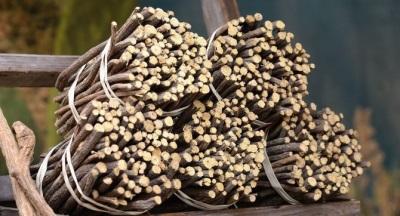 Kontraindikácie a poškodenie sladkého drievka
